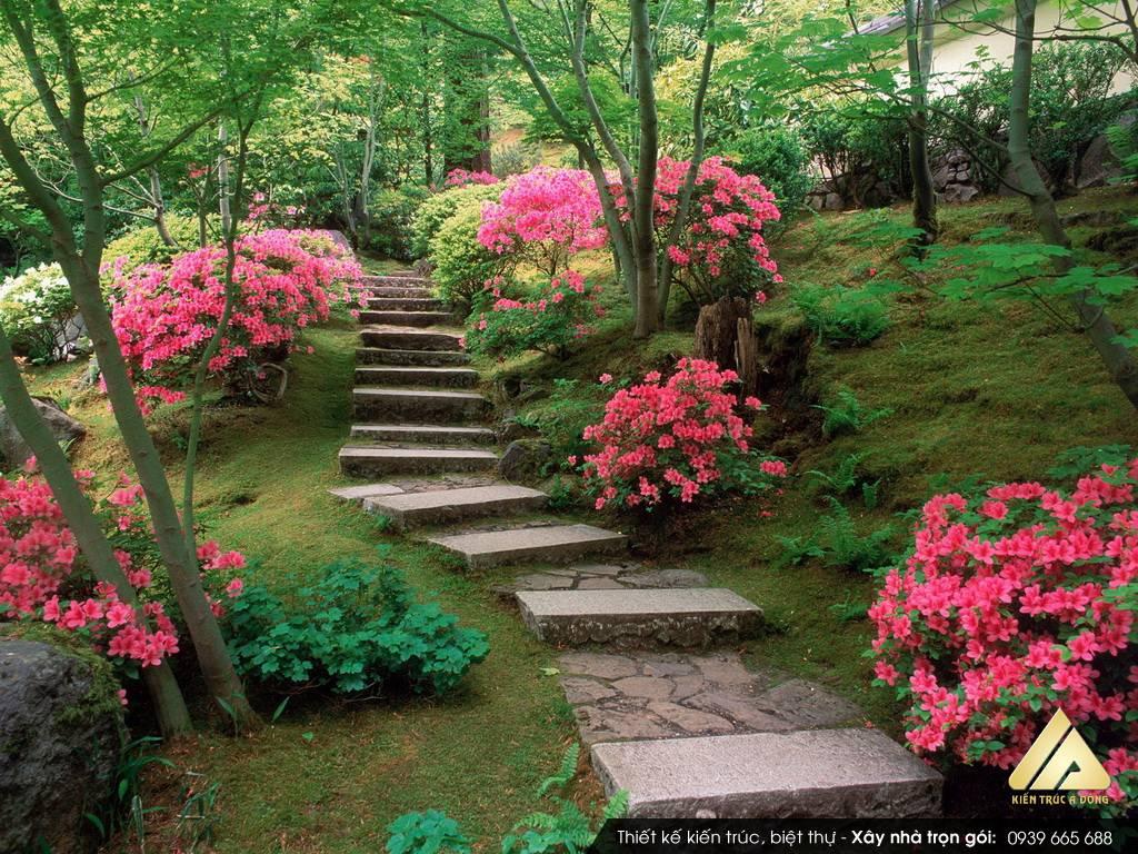 Tư vấn thiết kế sân vườn